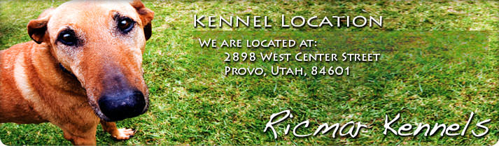 Kennel Location: We are located at: 2898 West Center Street, Provo, Utah, 84601